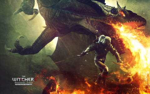 The-Witcher-2-Dragon-Fight-Wallpaper
